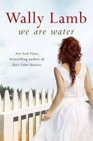 Read Online We Are Water Pdf Book By On Juggernaut Books