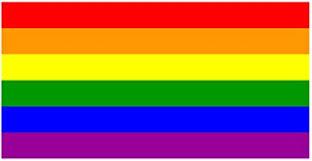 Amazon Com Lgbt Rainbow Flag Sticker Car Decal Bumper Sticker Gay Pride Lesbian Bisexual Transgender Support 5x3 Automotive