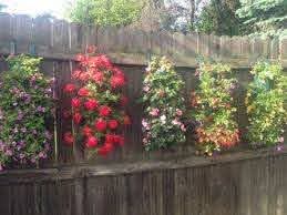 Hanging Grow Bags 5 Hole Containers Urban Farmer Seeds Hanging Plants Outdoor Hanging Plants On Fence Backyard Fences