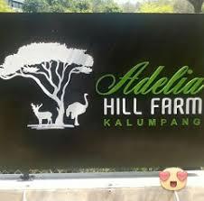 Adelia Hill Farm, Kampung Pasir Putih, 44000 Kerling, Malaysia ...