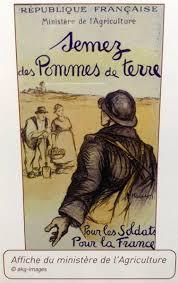 Le légume préféré des Français : La pomme de terre, trésor du Pérou - Le  Petit Vendomois
