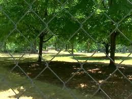 Birmingham Police Find No Malicious Purpose Behind Nooses Found Hanging In Kelly Ingram Park