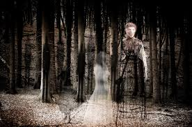 hình ảnh : thiên nhiên, mùa đông, ánh sáng, đàn bà, Ánh sáng mặt trời,  Huyền bí, Mùa thu, Màu xám, bóng tối, nỗi sợ, ảnh chụp, rùng mình, ma, Sáng  tác,