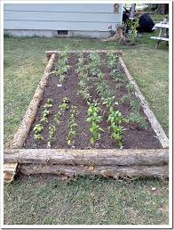 cedar log raised garden bed garden