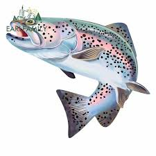 Earlfamily 13cm X 10 9cm For Trout Fish Colorful Car Decal Scratch Proof Car Stickers Waterproof Refrigerator Car Decoration Wish