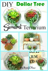 simple dollar tree diy succulent terrariums