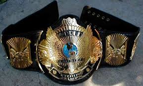 what is actually inside a wwe belt