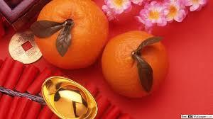 mandarin fruit hd wallpaper