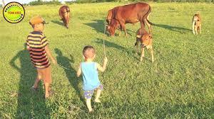 con bò - con bò ăn cỏ - liên khúc nhạc thiếu nhi remix 2020 ...