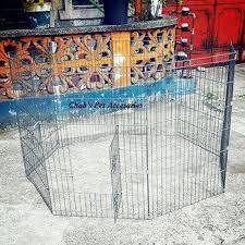 Dog Playpen Fence Shopee Philippines