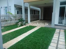 grass suppliers for colombo