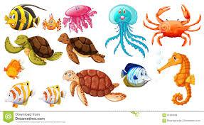 Diferentes Tipos De Animales De Mar Ilustración del Vector ...