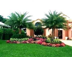 palm tree landscaping ideas leafvic org
