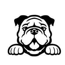 2020 Bulldog Cute Sticker Decal Peeking Puppy Car Window Truck Cute And Interesting Fashion Sticker Decals From Xymy797 3 82 Dhgate Com