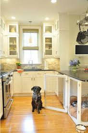 12 Indoor Dog Houses That We Think Are Pawsitively Genius Martha Stewart