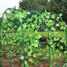 Green Wholesale Garden Fence Mesh Plant Vines Climbing Net Garden Agriculture Tools Net Bird Net Greenhouse Plastic Net Stand Fencing Trellis Gates Aliexpress