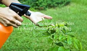 pesticides to keep garden pests