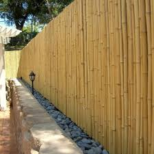 Exotic Fencing Houzz