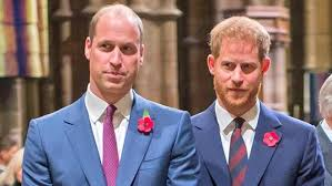 Prince William News, Pictures, and Videos - E! Online - UK