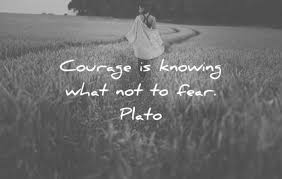 fear quotes that will make you more courageous