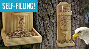 diy wine bottle bird feeder you