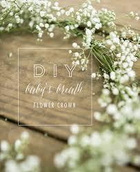 diy baby s breath flower crown diy
