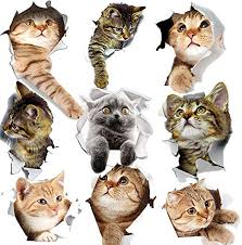 Amazon Com Yineco 3d Cat Wall Sticker 9 Pcs Pet Stickers For Kids Wall Decals Living Room Baby Rooms Bedroom Toilet House Wall Diy Decoration Kitchen Dining