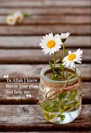 quote life reminder wisdom daily moslem muslimquote muslim