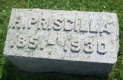 Hannah Priscilla Snyder Lerch (1851-1930) - Find A Grave Memorial