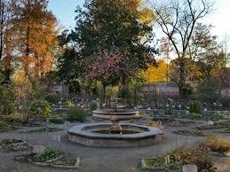 jardim botânico de padova um peio