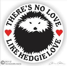 Hedgehog Decals Stickers A Nickerstickers