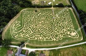 Tulleys Farm dinosaur maize maze near Crawley Editorial Stock Photo - Stock  Image | Shutterstock