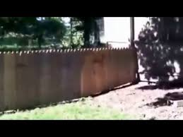Man Proudly Shows Off The Fence He Built To Keep His Dog In The Yard Funny Video