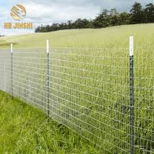 China American Market Farm Fence Metal T Post With Spade China Post T Post