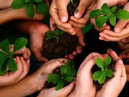 pesan menteri siti nurbaya pada hari lingkungan hidup sedunia