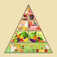 Vektor potravinová pyramida koncept #49162465 | fotobanka Fotky&Foto