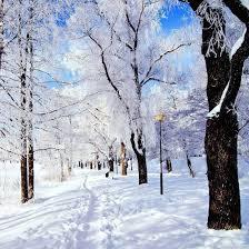 الشتاء الطبيعة خلفيات حية For Android Apk Download