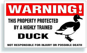 Amazon Com Solar Graphics Usa Warning Decal Property Protected By A Highly Trained Duck Mallard Bumper Fence Barn Or Window Sticker 5 75x3 25 Inch Automotive