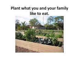 florida vegetable garden
