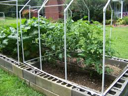 cold frame and raised bed pdf pattern