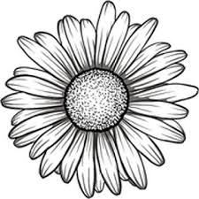 Amazon Com Divine Designs Black And White Gerbera Gerber Daisy Flower Vinyl Decal Sticker 4 Wide Automotive