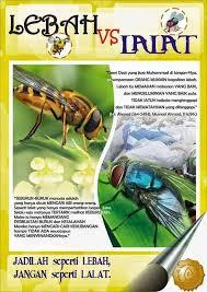 utuh wibowo lebah lalat sebuah pelajaran dari tuhan beda