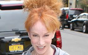 kathy griffin was stopped by cops for