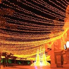 gorgeous outdoor fairy lights lighting