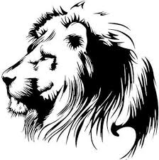 Amazon Com Mrbigdeal 2 X King Lion Narnia Sticker Car Truck Motorcycle Vinyl Decals Window Bumper Laptop Rocker 19 X 20 Cm Sports Outdoors