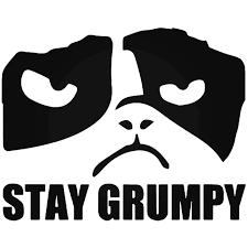 Stay Grumpy Cat Meme Vinyl Decal Sticker