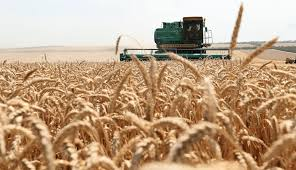 Аграрии Актюбинской области произвели продукцию | Inbusiness