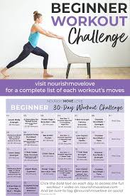 beginner workout plan 30 day workout