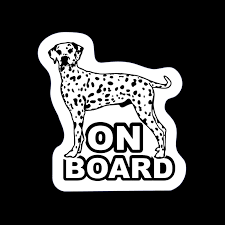 Discount Window Decal Dog Dog Vinyl Window Decal 2020 On Sale At Dhgate Com