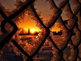 Black Hog Wire Fence Ice Snow Winter Hd Wallpaper Wallpaper Flare